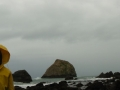 False Klamath Cove MARINe panorama Kyle and Ester 12-11-2012 #22
