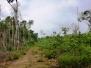 Waldschutzgebiete